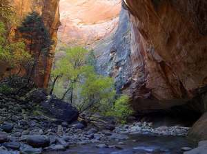 Zion Narrows, by Jon Sullivan, PDPhoto