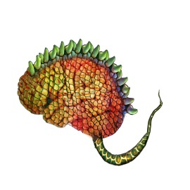 Fabulous Lizard Brain [Source: Sarah Goshman's Hot Yoga and Lizard Brain blog]
