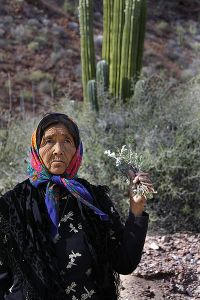 Doña Ramona, a Seri shaman from Punta Chueca, Sonora, Mexico. Photo by Tomás Castelazo, generously shared by Creative Commons via WikiMedia.