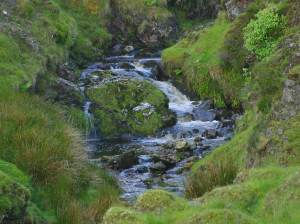 Glengesh Pass Stream, Ireland. Image courtesy of Public Domain Images.