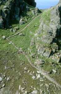 Skellig Michael, Co. Kerry, Ireland. Image courtesy of World Heritage Ireland.