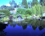 Osmosis-zen-garden_Sebastopol_CA_photobyjamiewalters