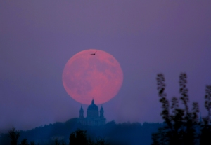 Harvest Super Full Moon, 2011, photo courtesy of APOD-NASA (deRosa).