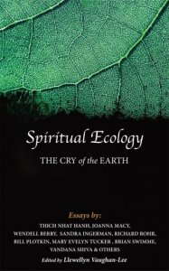 Spiritual Ecology: The Cry of the Earth, by Llewellyn Vaughan-Lee. Image courtesy of spiritualecology.org.