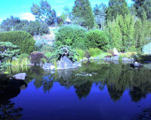 Osmosis zen garden, Sebastopol, CA. Photo by Jamie S. Walters (and used as the 'header' for Sophia's Children!).