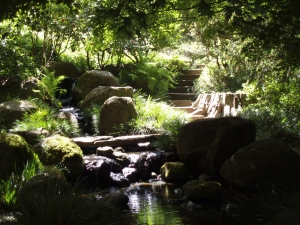 Zen Garden in the San Francisco Botanical Gardens. Photo by Jamie S. Walters, Sophia's Children.
