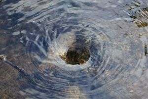 Whirlpool in a wee pond. CC-SSA image courtesy Shutinc via Wikimedia.
