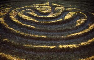 Grass maze at Dalby, Yorkshire, England. Public domain photo from Simon Garbutt via Wikimedia.
