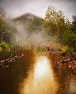 Rain and a golden reflection on a forest waterway. Public domain photo from Larissa Koshkina via PDpictures.net.