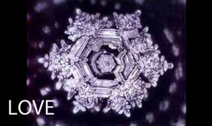Water crystal image from Dr. Masaru Emoto for the word-vibration Love.